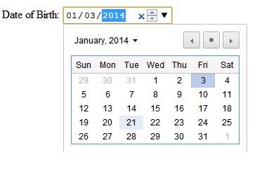 HTML5 Input Type Date