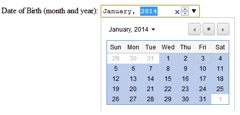 HTML5 Input Type Month