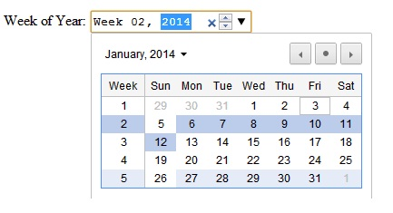 HTML5 Input Type Week
