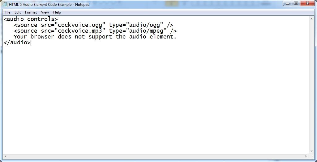 HTML 5 Audio Element Code Example